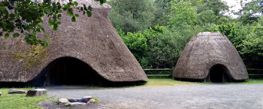 Irish National Heritage Park - South Wexford Coastal Tour - Wexford Tourist Attractions - Guided Bus Tour - Coach Tour